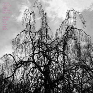 COLIN STETSON - Never Were The Way She Was - LP