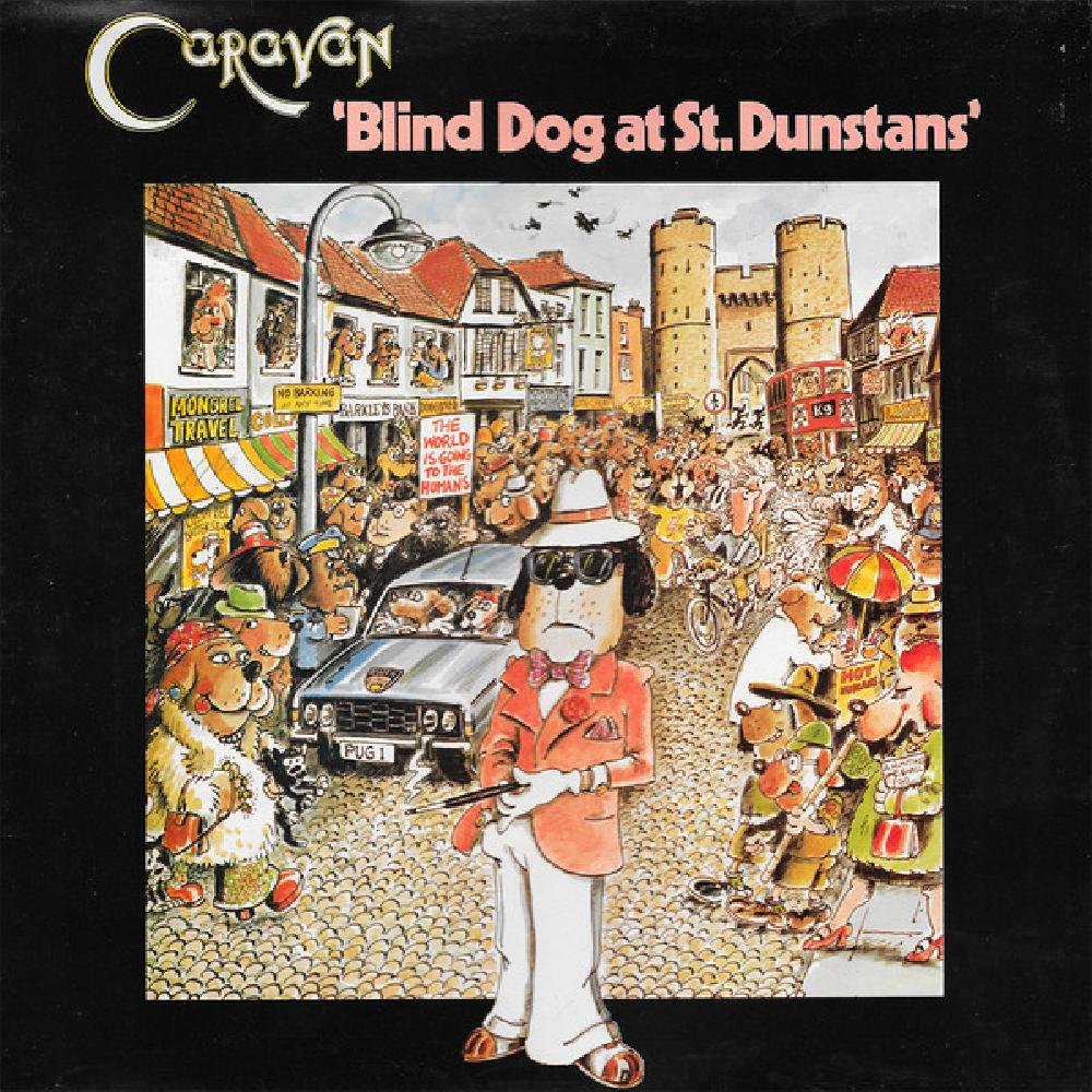 caravan blind dog at st. dunstans